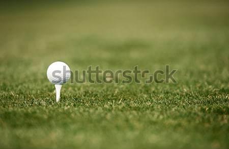 Golfball verde gramado foto esportes Foto stock © Novic