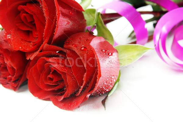 роз воды фото три капли воды белый Сток-фото © Novic