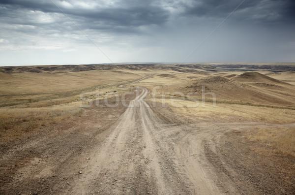 Country roads Stock photo © Novic