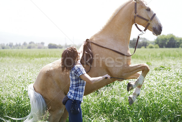 Stock photo: Woman training horse to rear up