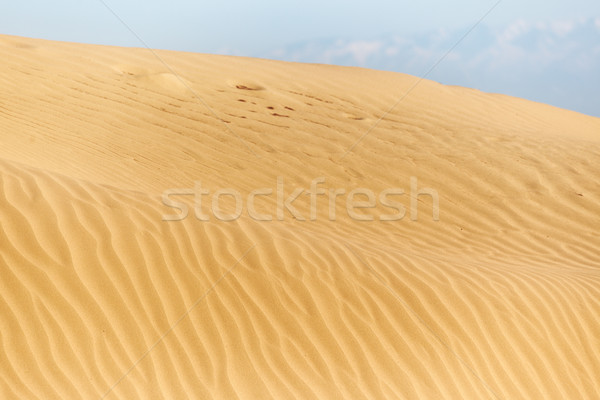 Desert Stock photo © Novic