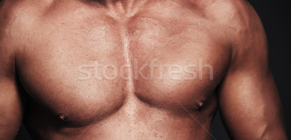 Corps musclé vue aux seins nus homme sport Photo stock © Novic