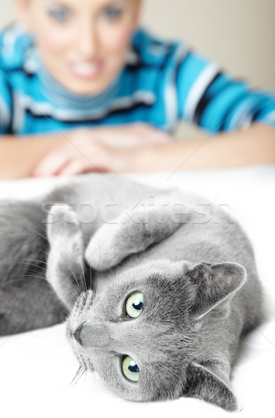 I love cats Stock photo © Novic