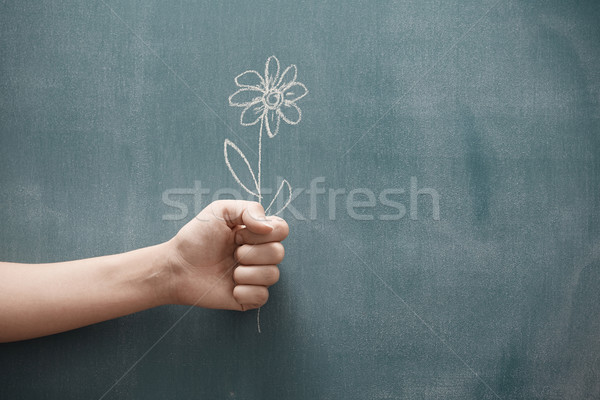 Bemutat virág emberi kéz tart egy virág rajzolt Stock fotó © Novic