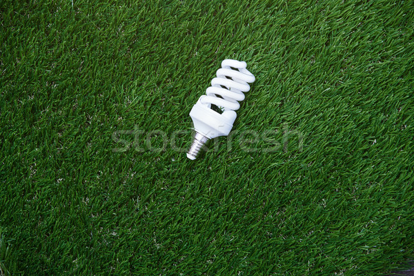 Energy saving bulb in the grass Stock photo © Novic