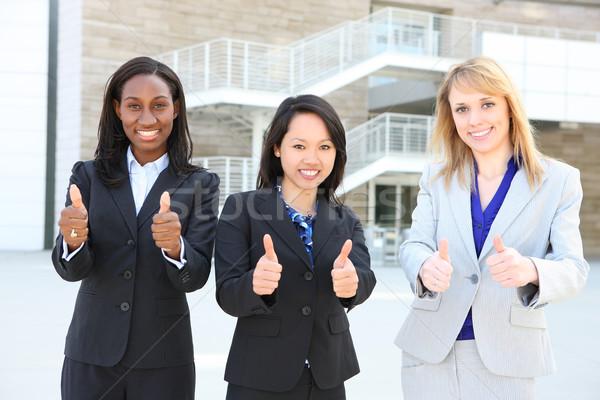 Diverse Ethnic Business Team Stock photo © nruboc