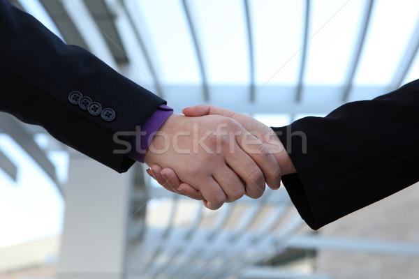 Business deal handshake  Stock photo © nruboc