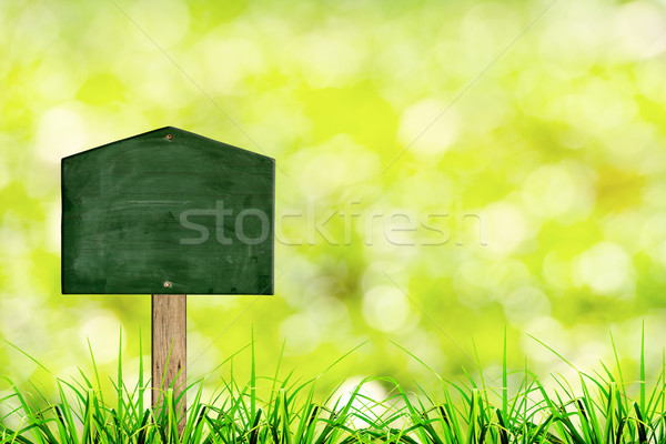 Green sign board with natural background  Stock photo © nuiiko