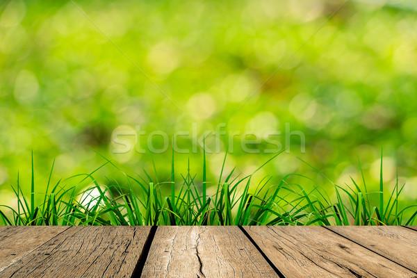 春 緑の草 緑 ぼけ味 日光 木材 ストックフォト © nuiiko