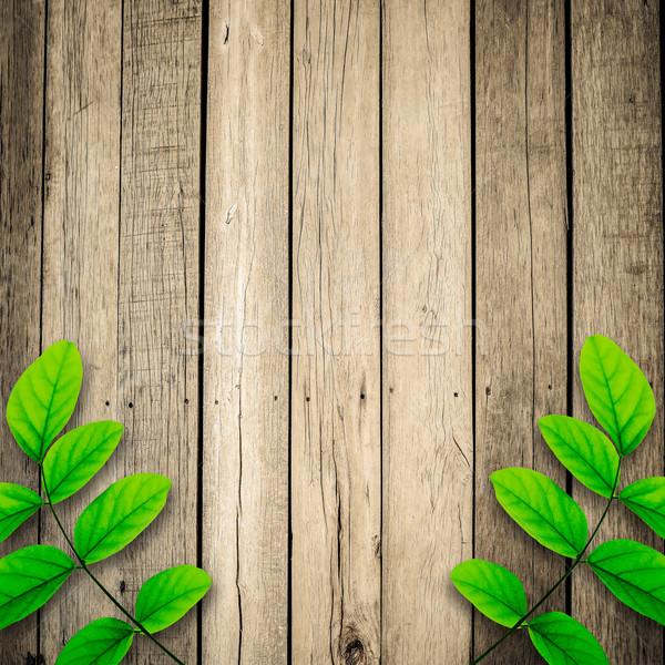 緑の葉 古い 木製 テクスチャ ツリー 自然 ストックフォト © nuiiko