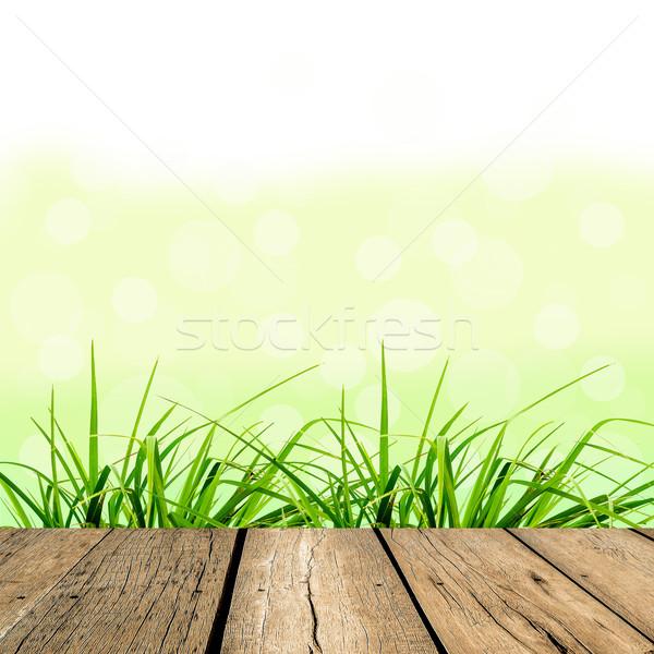 春 緑の草 緑 ぼけ味 日光 フローリング ストックフォト © nuiiko