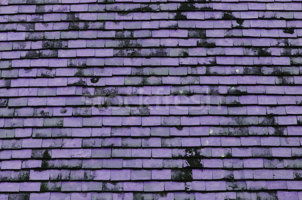 Purple roof for background usage  Stock photo © nuiiko