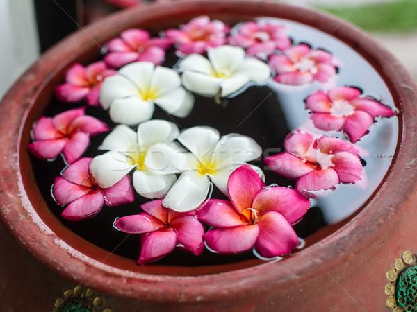 花 水 花 抽象的な にログイン プール ストックフォト © nuiiko