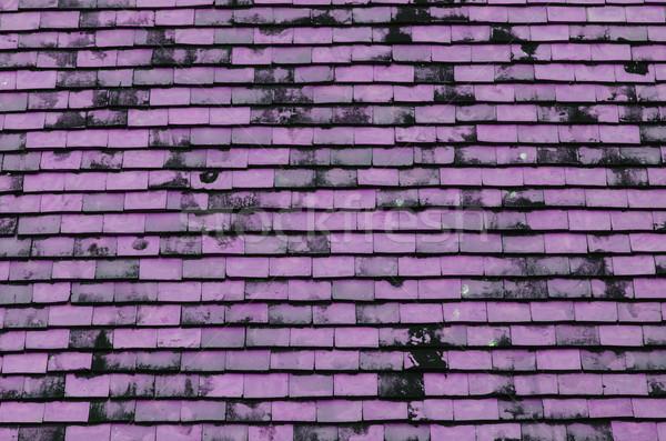 Roze betegelde dak textuur abstract home Stockfoto © nuiiko
