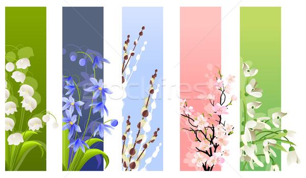 Foto stock: Coleção · floral · banners · flores · da · primavera · isolado · branco