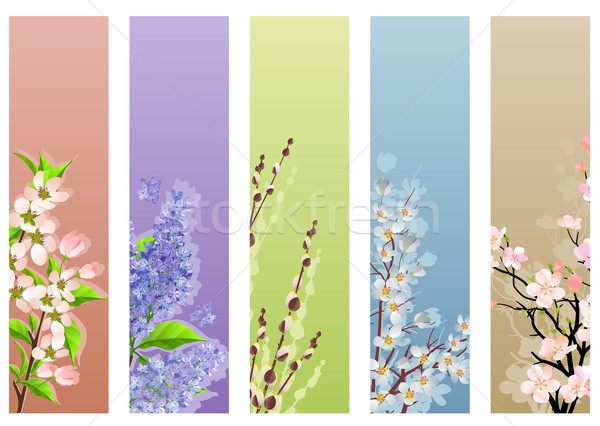 Collection of floral banners Stock photo © nurrka