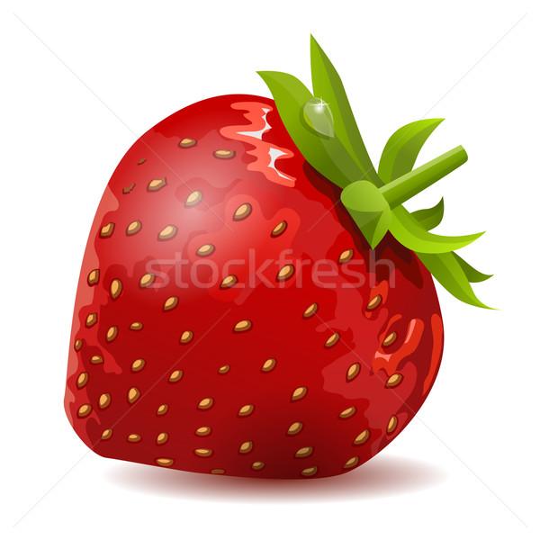Ripe strawberry isolated Stock photo © nurrka