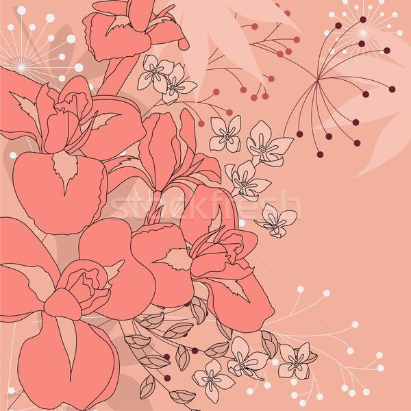Virágmintás rózsaszín körvonal virágok növények erdő Stock fotó © nurrka