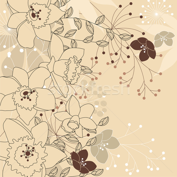 Stylish floral light beige background Stock photo © nurrka