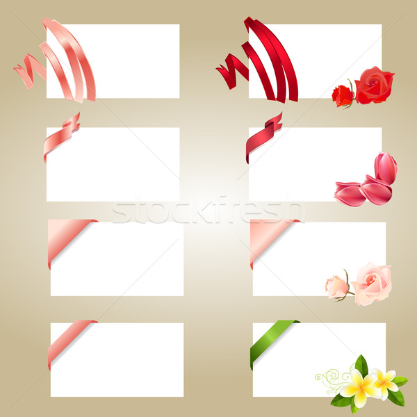 Conjunto branco cartões flores amor Foto stock © nurrka