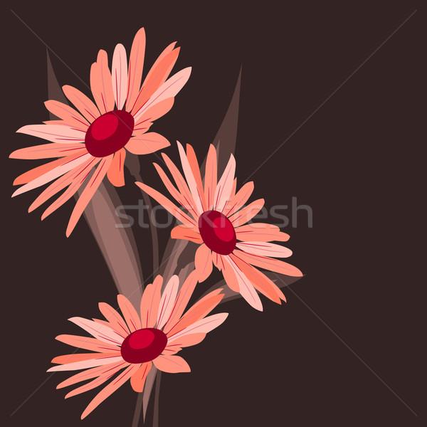 Pink flowers on dark background Stock photo © nurrka