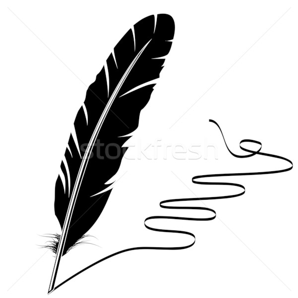 Black-and-white feather and flourish Stock photo © nurrka