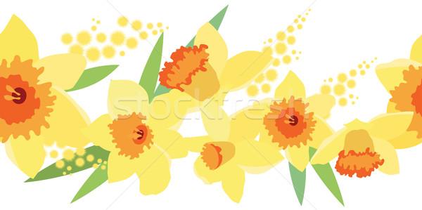 Naadloos horizontaal narcis patroon voorjaar grens Stockfoto © nurrka