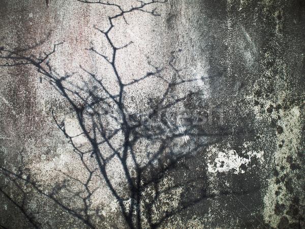 Oude muur abstract grunge textuur verf Stockfoto © nuttakit