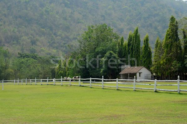 Witte houten hek berg achter Stockfoto © nuttakit