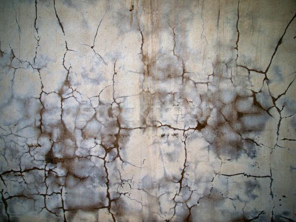 wall plastered wet  Stock photo © nuttakit