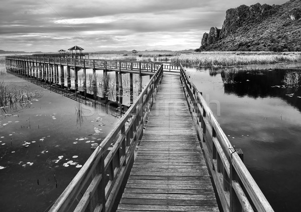 Boardwalks on the lake black and white Stock photo © nuttakit