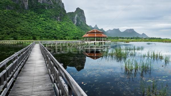 Tó park roi Thaiföld égbolt erdő Stock fotó © nuttakit