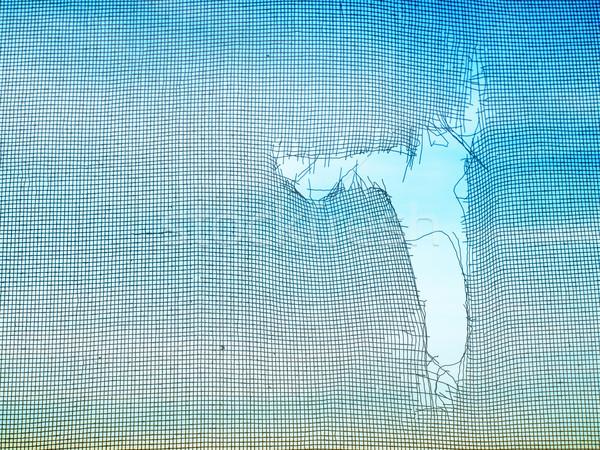 Zanzara filo schermo vecchio Foto d'archivio © nuttakit