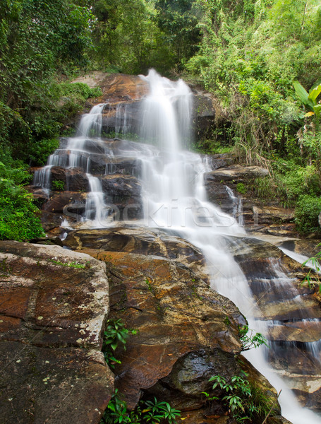 Waterfall and green leaves of a rainforest Stock photo © nuttakit