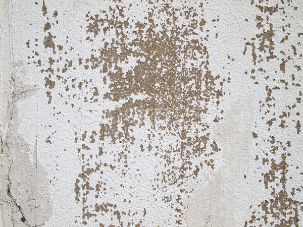 Rachaduras velho cimento gesso parede abstrato Foto stock © nuttakit