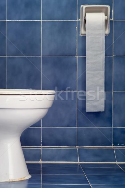 Witte sanitair lang Blauw badkamer Stockfoto © nuttakit