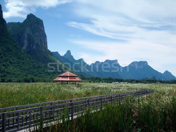 Roi tó központi fából készült híd fű Stock fotó © nuttakit