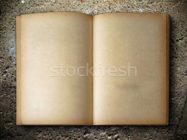 Velho livro abrir dois cara rocha papel Foto stock © nuttakit