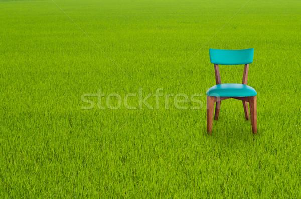 Wood chair on Green Grass Stock photo © nuttakit