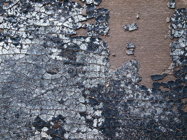 Surface of the old leather Stock photo © nuttakit