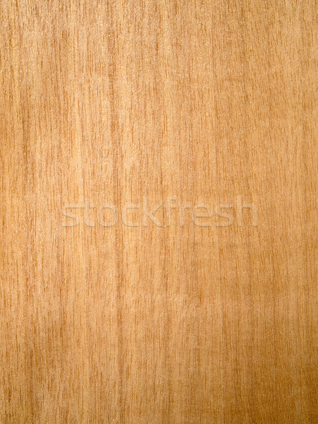 Aneger Wood Stock photo © nuttakit