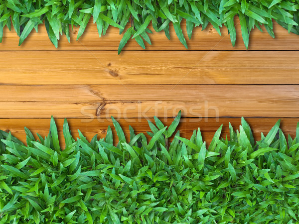 More Below Green Grass on Wood Stock photo © nuttakit