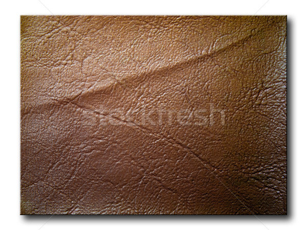 nature brown leather Stock photo © nuttakit