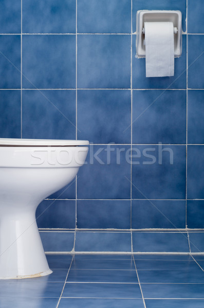 White ceramic sanitary ware in Blue bathroom Stock photo © nuttakit