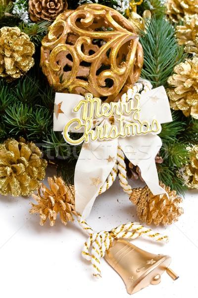 Christmas dekoracji odizolowany biały zielone zimą Zdjęcia stock © nyul