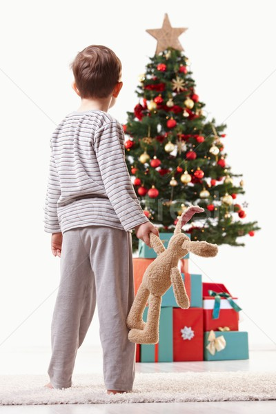 Little kid looking at christmas tree Stock photo © nyul