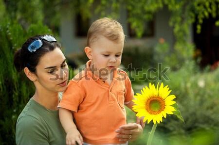 Anya baba nyár kettő évek öreg Stock fotó © nyul