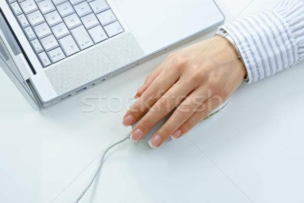 Female hand using computer mouse Stock photo © nyul