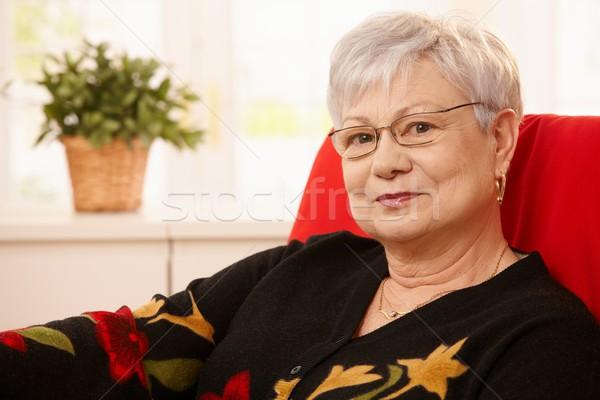 Retrato senior bom cabelos brancos mulher Foto stock © nyul