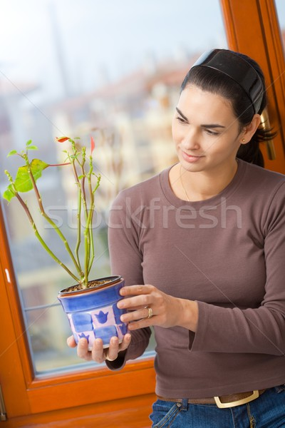 Woman holding potted plant Stock photo © nyul